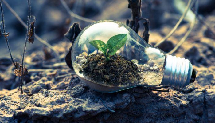 Consumo consciente: o que é e como impacta suas vendas